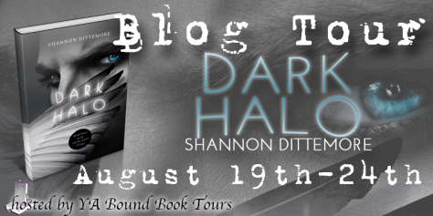 dark halo blog tour